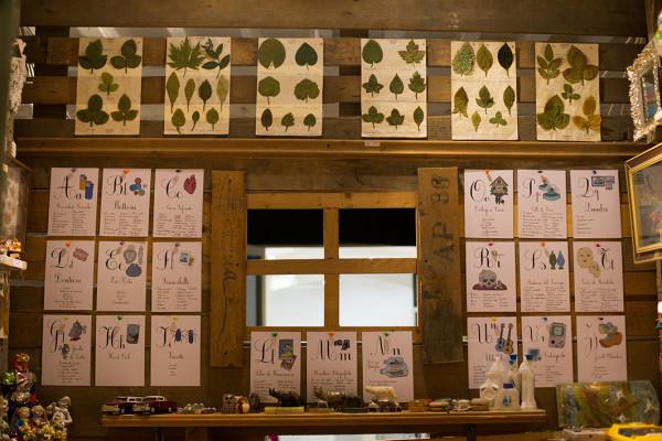 Collezione di foglie di seta e abecedario